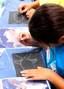 Student holding an oil pastel crayon and drawing the outline of a fish on a piece of black paper